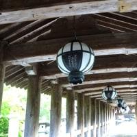 【奈良】 『源氏物語』玉鬘ゆかりの地 長谷寺をお詣りしました♪