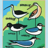 野鳥と落葉松2016