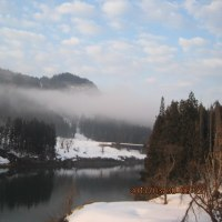 -6℃の世界・・・桜便り・・・(?)・・・ブログ更新しました!