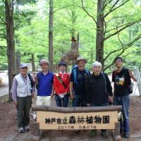 第13回 ハイキングに行こう! 「炭ヶ谷・徳川道コース」