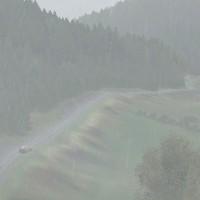 DiRT Rally ダートデイリーライブ(フォードEscort RS イギリス)