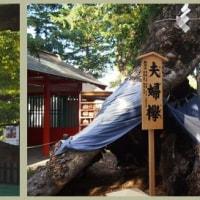 生島足神社島