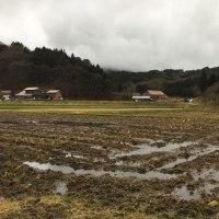 ◇1月発送◇特別栽培米◇