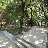 蘇州 お散歩 環古城河健身歩道(婁門~相門)