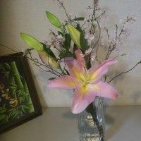 春の花の贈り物