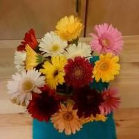 花は幸せしか与えない