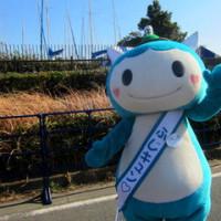 第7回 湘南藤沢市民マラソン