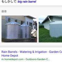 They go out to fill the big rain barrels with water from the municipal water supply.