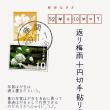 ●挿絵俳句337・返り梅雨・透次351・2017-7-1(土)