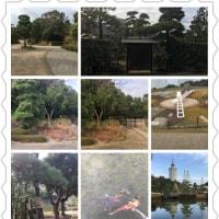 日本庭園12・22