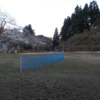 テニスコート作りました!