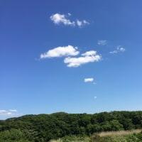 夏の雲失いしもの数多し