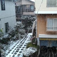 大雪は困るけれど、ちょっと降る雪は嬉しい