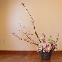 全体が桜にみえる桜のフラワーアレンジメント@鎌倉七里ガ浜