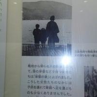 岸壁の母、舞鶴港