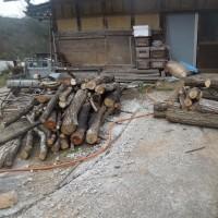 シイタケの原木と薪ストーブの薪を取った木の枝を処分しました