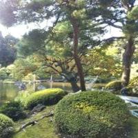旧古河庭園・・・秋の薔薇フェスティバル