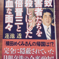 中山恭子議員が国会で問題発言!「蓮池透さんは工作員に利用されている」⇒安倍首相も同意!