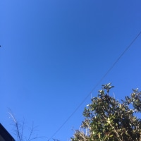 町田市の空