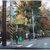通りすがりの風景から