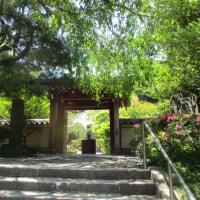 鎌倉・長谷の「光則寺」を訪ねて