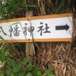 伊豆大島/民宿八幡荘