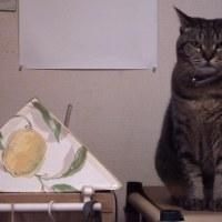 ネコと共存、知恵比べだ。