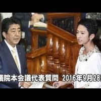 蓮舫VS首相 器が小さい・・・VS二重国籍の証明の努力を・・・