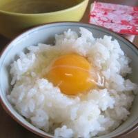 平成29年2月25日 朝飯