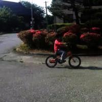 自転車に乗れた!