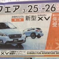 SUV Fair 2週目