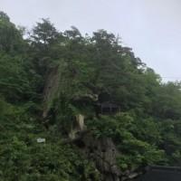 東北インターナショナルドッグショー  山寺観光編