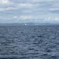 もう一度、瀬戸内の海
