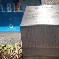東京探訪・樋口一葉編⑧ 15度目の引っ越し、奇跡の14か月、そして死