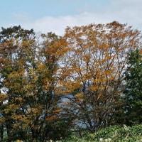 滑川の山手に上って、秋の日を浴びる・・・滑川市の山手(東福寺・大崎方面)