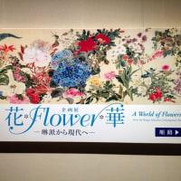 花*Flower*華 at 山種美術館