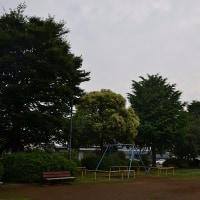 6月29日、午前6時過ぎの空模様