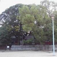 空き家と 空いてる公園