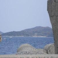 祝島沖・上関原発:山口県が近く埋め立て許可へ?