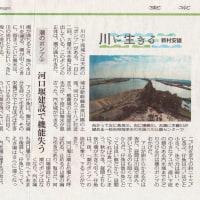 第46回 潮のポンプ  河口堰建設で失われた機能