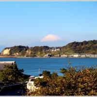 光明寺裏山からの富士山