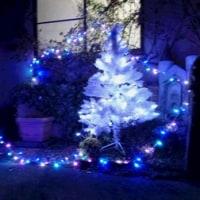 【カトリホーム】 ~ クリスマス編 ~ №3