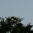 早朝の月(^^♪