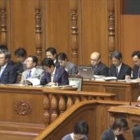 蓮舫民進党代表と橋本聖子自民党参議院議員会長が質問 参議院でも代表質問