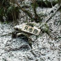 高隈山・大篦柄岳は雪