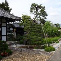 寺町散策、天寧寺の額縁門から比叡山が見える!