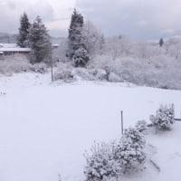 雪解けの土の匂い