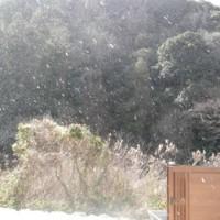 昨日の棚田は大雪@0@;