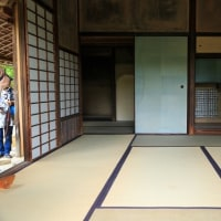 紫陽花の京都