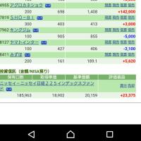喘息出てきた(´・ω・`)4/14の株の結果